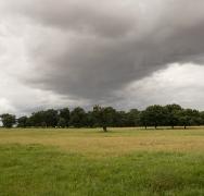 Brooding Sky over Parkland at Helmingham Hall