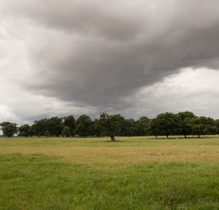 Brooding Sky over Parkland at Helmingham Hall