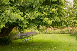 A place to relax under the Mulberry Tree in the Parterre ...