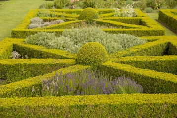 Close up of Knot Garden