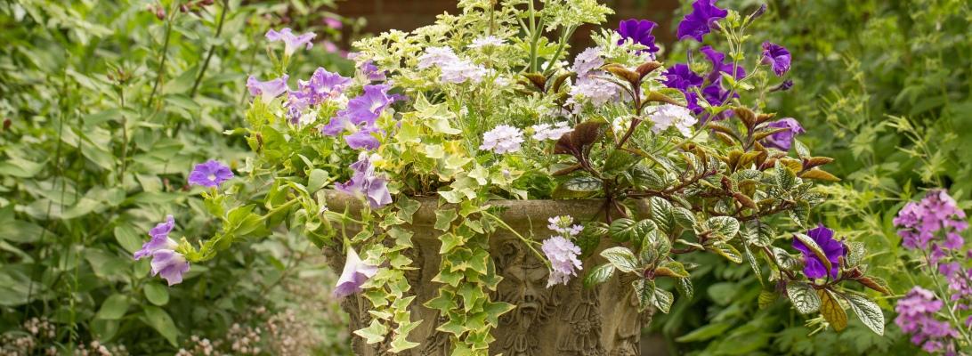 Flowering Urn
