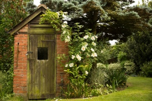 Brick Outbuilding & Rambling Rose at Walnut Tree Cottage