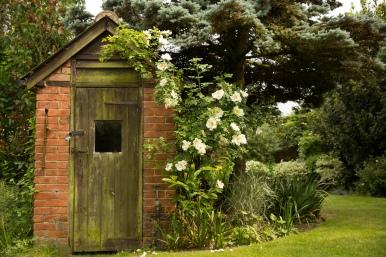 Brick Outbuilding & Rambling Rose at Walnut Tree Cottage