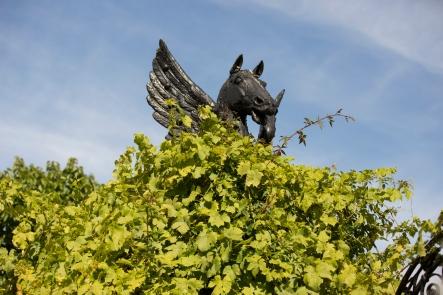 Helmingham Blog-45