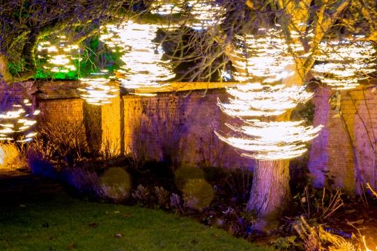 Illuminated Trail Helmingham-100