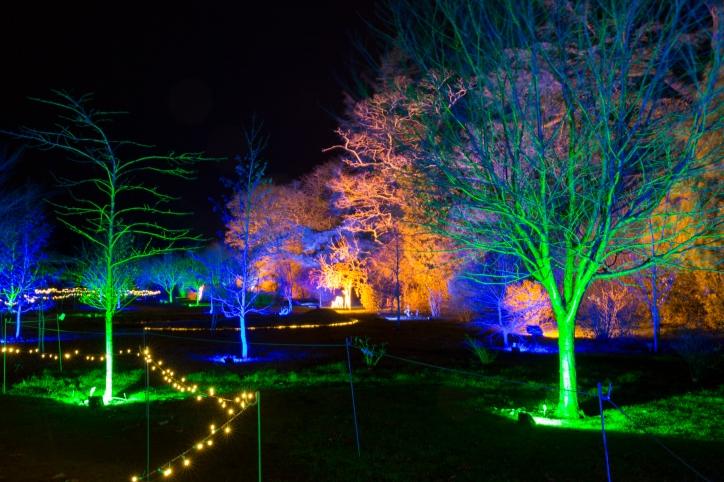 Illuminated Trail Helmingham-28