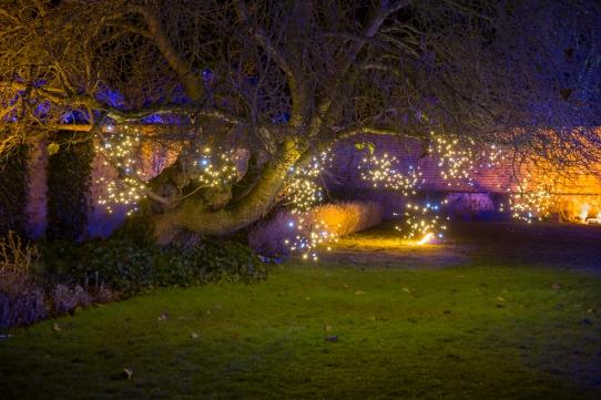Illuminated Trail Helmingham-34