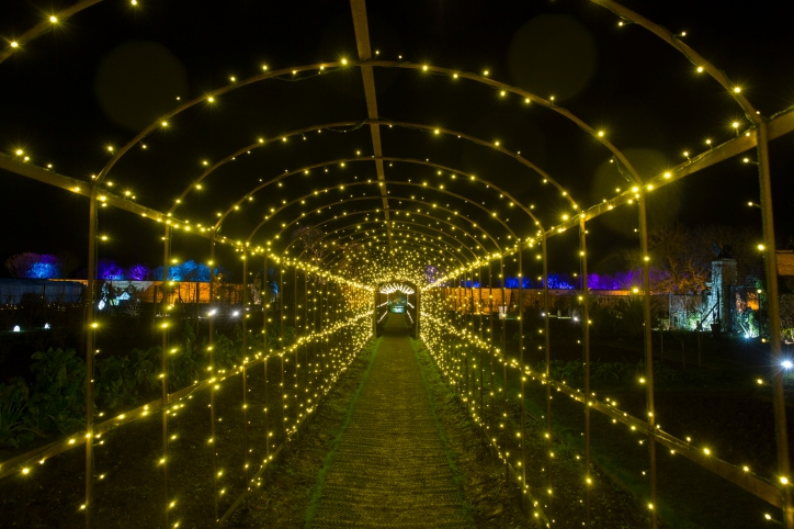 Illuminated Trail Helmingham-37