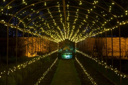 Illuminated Trail Helmingham-38