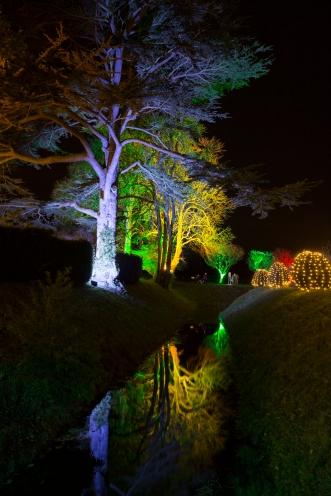 Illuminated Trail Helmingham-41