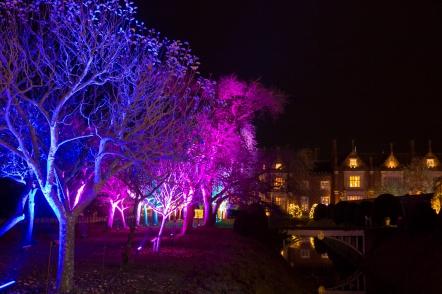 Illuminated Trail Helmingham-44