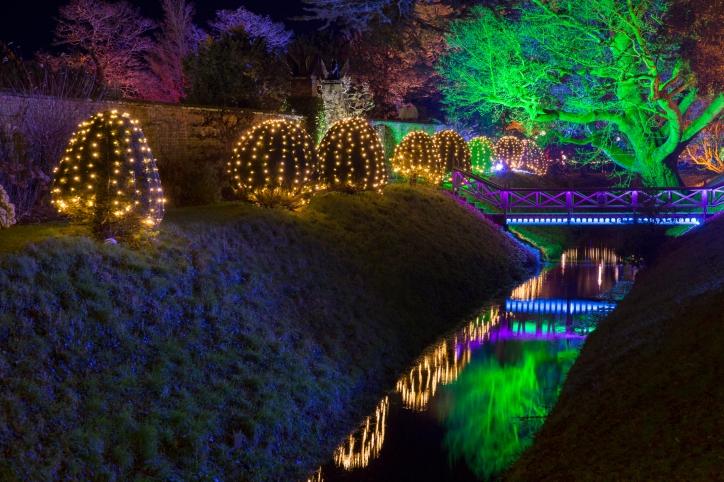 Illuminated Trail Helmingham-47