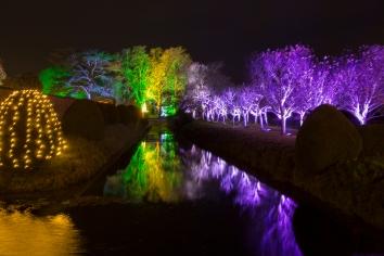Illuminated Trail Helmingham-50