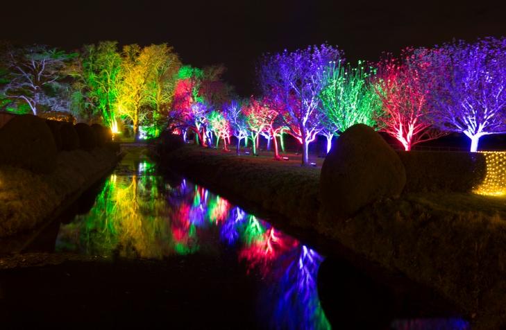 Illuminated Trail Helmingham-52